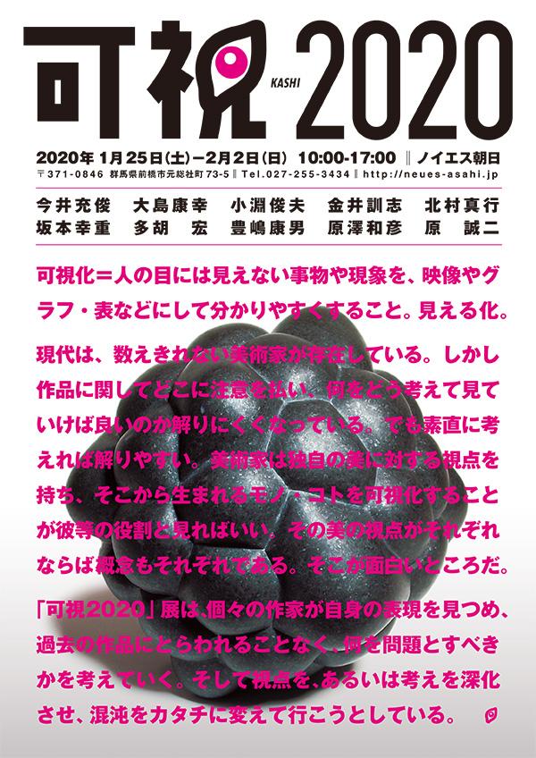 可視2020